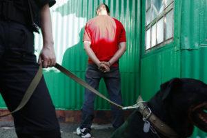 Героин с мукой. Как в России заводят дела по распространению наркотиков